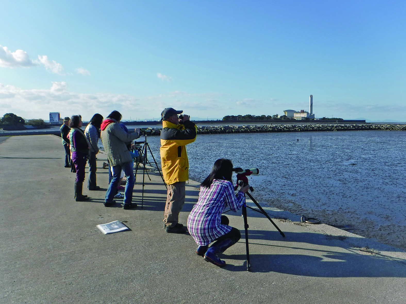 ズグロカモメと冬鳥観察会 @ ひがたらぼ   中津市   大分県   日本